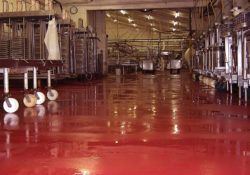 Chemical Wash Down Floor Coatings Systems